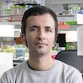 Claudio Hetz, BNI de la Universidad de Chile