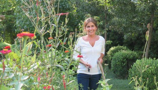 Huertos en casa. cómo y qué cultivar